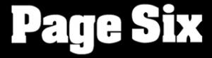 Logo Page Six